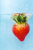Underwater Strawberry Stock Images