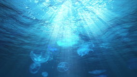 Underwater Sun Rays in the Ocean and Jellyfish (Loop). Jellyfish swimming as water ripples coming towards camera. Sun rays shinning down. Seamless looping video stock footage
