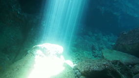 Underwater Sunbeams. Footage swimming through sunbeams in an undewater cave stock footage