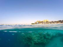 Underwater surface split view of coral fish and Egypt Stock Images