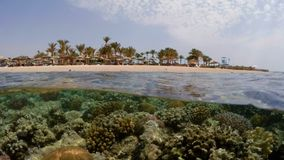 Underwater surface split view of coral fish and resort beach. Underwater surface split view in the tropics paradise with fish and coral reef, above waterline stock video footage
