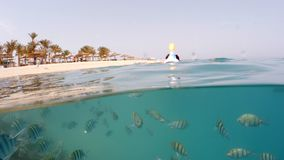 Underwater surface split view of coral fish and resort beach wit. Underwater surface split view in the tropics paradise with fish and coral reef, above waterline stock footage