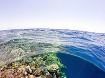 Underwater and surface split view in the tropics sea Royalty Free Stock Photo