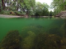 Underwater and surface water absorption from a stream. The Wertach river under and over water stock photography