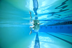 Underwater swimming royalty free stock photo