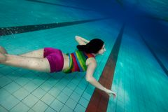 Underwater swimming Stock Image