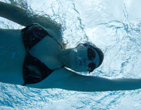 Underwater swimming woman Royalty Free Stock Image