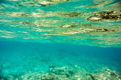 Underwater texture and fauna in Ionian sea. Zakynthos, Greece Stock Image