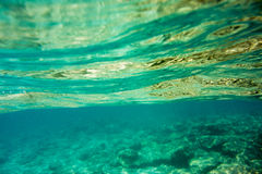 Underwater texture and fauna in Ionian sea. Zakynthos, Greece Royalty Free Stock Images