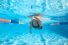 Underwater training in the pool Royalty Free Stock Image
