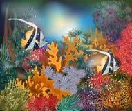 Underwater tropical card with Moorish idol fish, vector. Illustration Stock Photo
