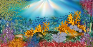 Underwater tropical wallpaper, vector. Illustration Royalty Free Stock Images
