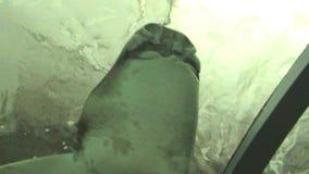Underwater tunnel stock video footage