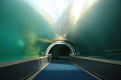 Underwater Tunnel. A Clear Underwater Tunnel Photo stock photography