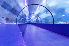Underwater Tunnel Royalty Free Stock Photos
