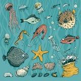 Underwater vector set Stock Image