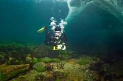 Underwater video operator Baikal Stock Photo