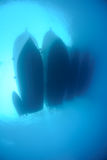 Underwater view of dive boats moored together Royalty Free Stock Image