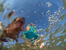 Underwater view of a father and her daughter with distorted face. Father and her toddler daughter having fun at the sea. Distorted faces view through water Royalty Free Stock Photos