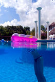 A girl in a swimming Pool at playa del Carmen, Mexico Royalty Free Stock Image
