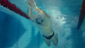 Underwater view of man diving and swimming. In the pool stock video