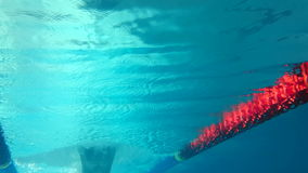 Underwater view of man swimming. In the pool stock video