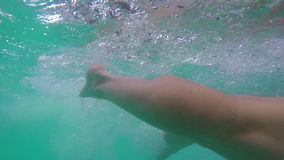 Underwater view of man swimming towards the camera. In Slow Motion. Underwater view of man in swimming cap and glasses swimming towards the camera in the pool stock footage