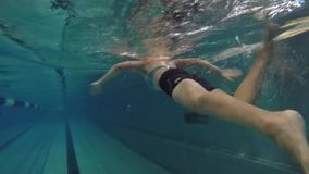 Underwater view professional swim training in swimming pool, freestyle  crawl stock video