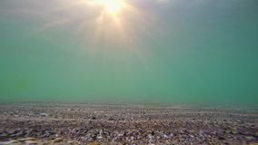 Underwater view of the sea surface stock video footage