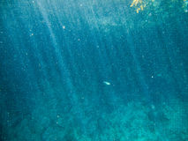 Underwater. View swimming in the sea Stock Photography