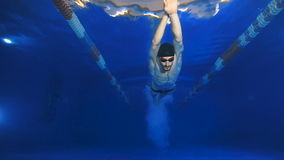 Underwater view to the beautiful professional swimmer diving into the pool and swims over the camera. stock footage