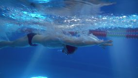 Underwater view to the beautiful professional swimmer swiming crawl stroke in the pool royalty free stock images