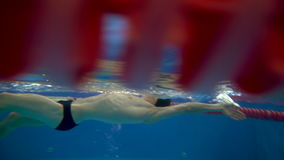 Underwater view to the professional swimmer quickly swiming backstroke in the pool . Underwater side view to the beautiful bearded professional swimmer quickly stock video footage