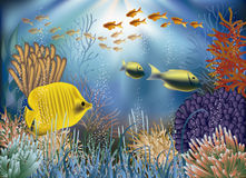 Underwater wallpaper with fishes Royalty Free Stock Images