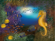 Underwater wallpaper with seahorse and fish Royalty Free Stock Photos