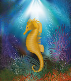 Underwater wallpaper with seahorse Stock Photography