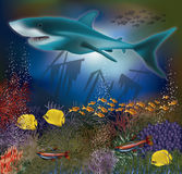 Underwater wallpaper with shark and old ship. Vector illustration Royalty Free Stock Photo