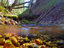 An underwater and water absorption by a stream. 