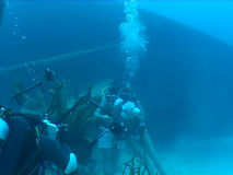 Underwater wedding video caribbean sea. Underwater diving video wedding ceremony stock footage