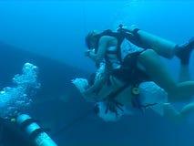 Underwater wedding video caribbean sea stock video footage