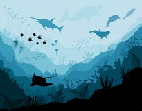 Underwater wildlife, Scat, shark, dolphins. And sea background vector illustration Royalty Free Stock Photos