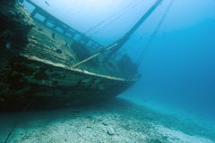 Underwater Wooden Caribbean Shipwreck stock photography
