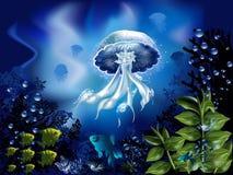 Underwater World. The underwater world of fish, jellyfish  and plants Stock Photo