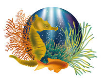 Underwater world banner with seahorse and fish Royalty Free Stock Photography