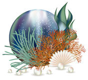 Underwater world banner with seashell and pearls Royalty Free Stock Photos
