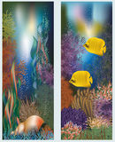 Underwater world banners with seashell Royalty Free Stock Photography