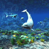 Underwater World. A beautiful underwater scene with a dolphin, sharks and other tropical fish Royalty Free Stock Photography