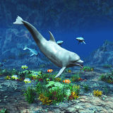 Underwater World 2. A beautiful underwater scene with a dolphin, sharks and other tropical fish Royalty Free Stock Images