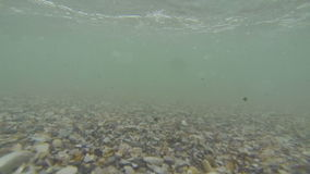 Underwater world captured in the shallow pebble seashore. Waves coming over the camera stock video footage