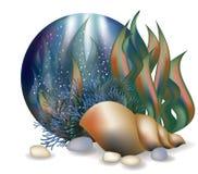 Underwater world card with seashell Stock Photo